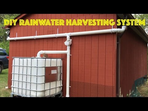 DIY Rainwater Harvesting System