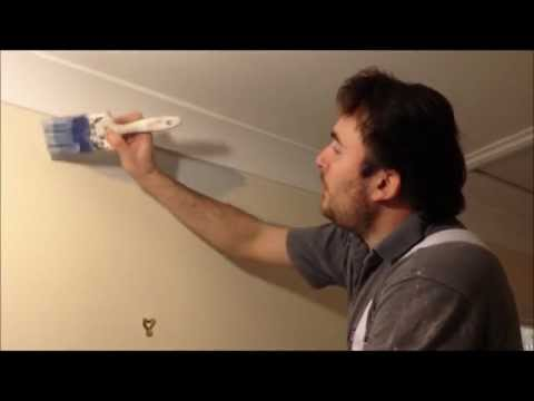 How to... Cut-In a Straight Line and Paint a Wall