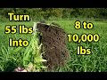 Making your own Fall Leaves, Building GARDEN SOIL health organic composting..