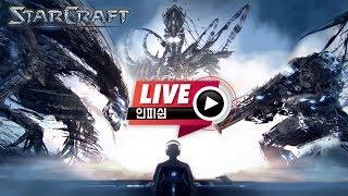 【 인피쉰 생방송 Live 】 모든 공방인 하드캐리 가즈아~! 스타 빨무 스타크래프트 빠른무한 팀플 (2020-05-25 월요일)