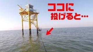 有明海の「ココ」にルアーを泳がせたら…