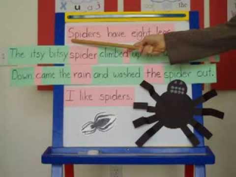 Letters, Words, Sentences Sorting Lesson (free printables- link below)
