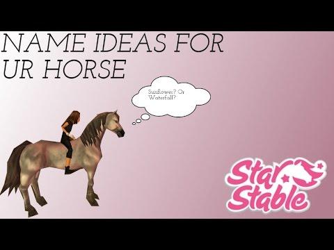 SSO | 5 NAME IDEAS FOR UR HORSE