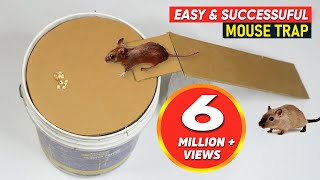 Bucket Mouse Trap | Best Mouse Trap - DIY Homemade mouse trap