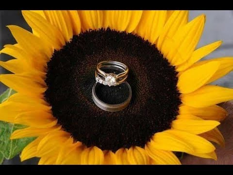 Beautiful ideas for a Sunflowers themed wedding #1