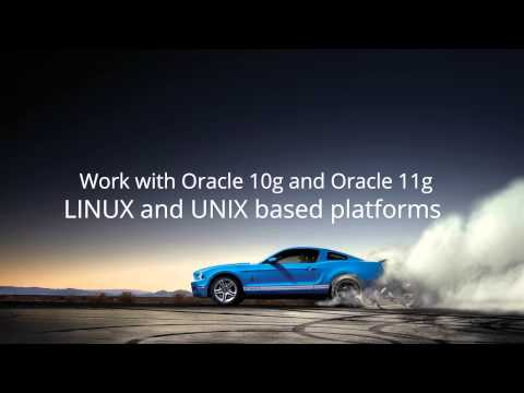 Ford Oracle Database Administrator Career Video