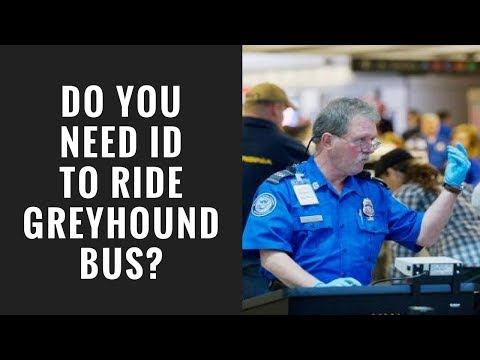 Do They Check ID On Greyhound Bus?