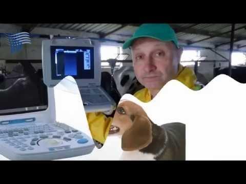 Buy Used Veterinary Equipment   Keebovet com