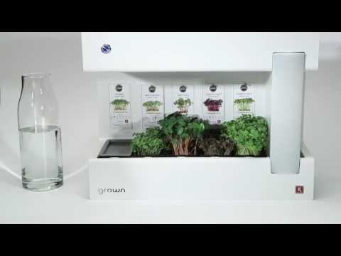 Grown - Advanced indoor garden for microgreens
