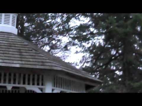 Powerwash , pressure wash, 914 788 9274 cortlandt mnr ny 10567 westchester house vinyl wood deck