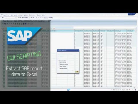 SAP GUI Scripting - Extract SAP report data to Excel