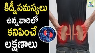 Signs and Symptoms of Kidney Failure  - Health Tips in Telugu || Mana Arogyam