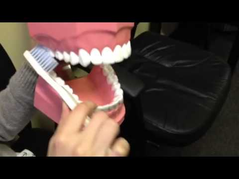 3 Clean Back Of Teeth