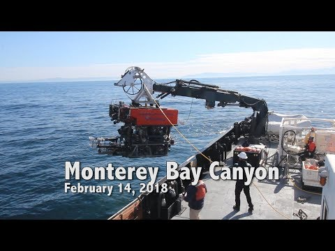 Mid Water Research Monterey Bay