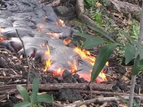 Forest Lava Flow Aug 8 09