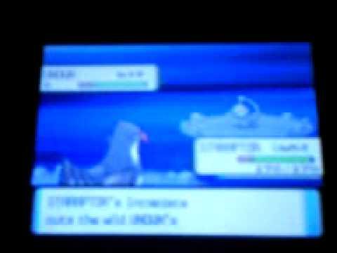 test : catching mew in pokemon diamond version