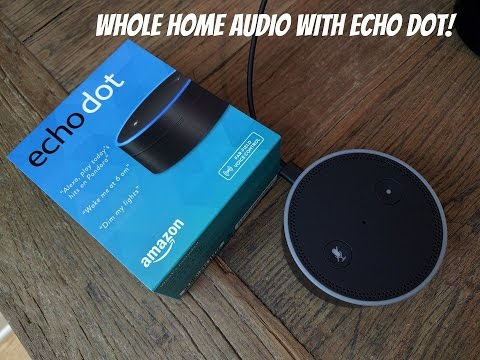 Amazon Echo Dot hooked up to whole home audio