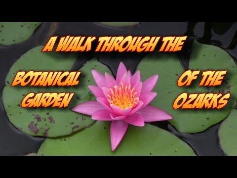 A Walk Through the Botanical Garden of the Ozarks in Northwest Arkansas