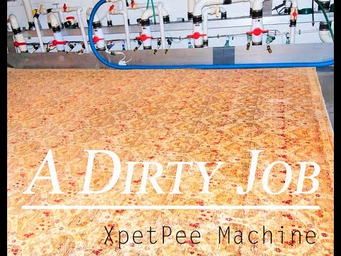 Dirty job Part 2 - cleaning Oriental rug from dog urine.