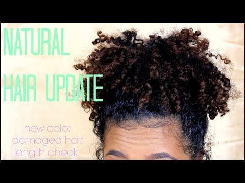 Natural Hair Update (New Color, Damaged Hair, Length Check)  Tatyana Celeste ❤︎