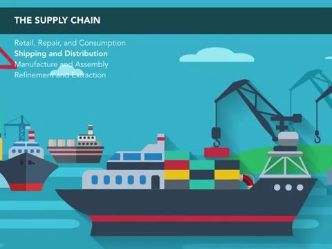 The Supply Chain Illustrated