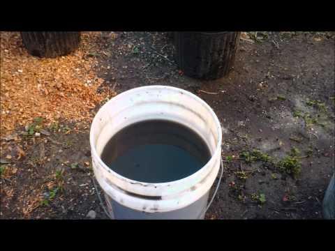 Making Manure Tea