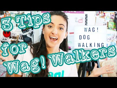 3 Tips for Wag! Dog Walkers | Wag Review Update | AFTH