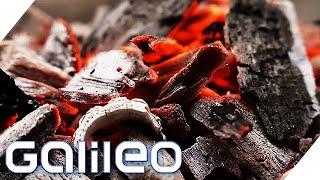 20-mal weniger CO2: Grillen mit gutem Gewissen durch Holzkohle aus der Heimat | Galileo | ProSieben