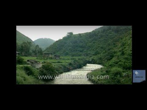Negative carbon dioxide country, Bhutan