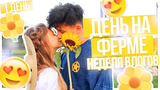 Download НЕДЕЛЯ ВЛОГОВ // День на ФЕРМЕ???/ПОНЕДЕЛЬНИК Video