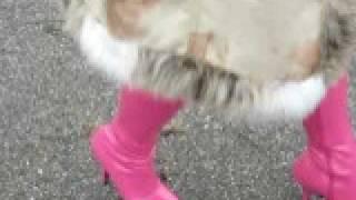 My pink Stiefel. High Heels  Walking