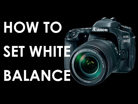 Canon 80D How to adjust white balance in ANY DSLR ?
