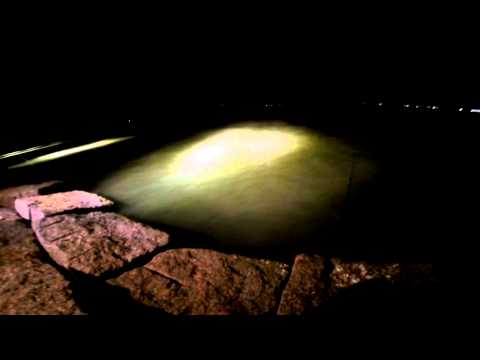 Texas City Dike fishing (night fishing) GoPro Hero3+ 720p HD