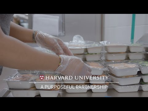 Harvard students help in food recovery and donation program
