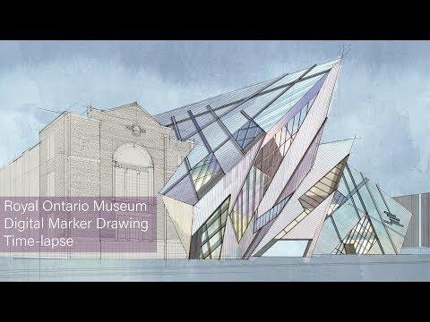 Royal Ontario Museum Digital Marker Drawing pt. 2: Preliminary Coloring