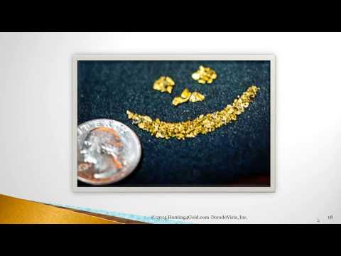 The Gold Prospecting Experience