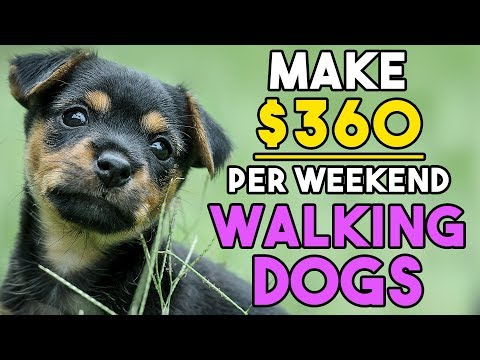2 Ways to Make Money Walking Dogs 2017 | Walk Dogs For Money