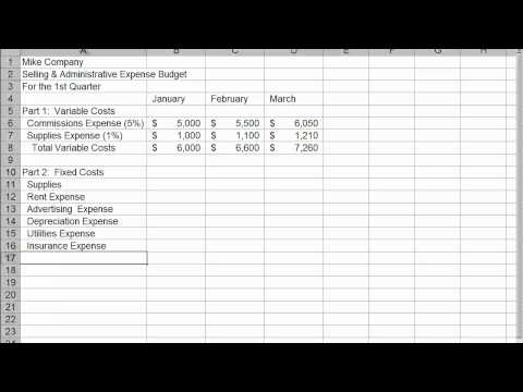 Mike Company Selling and Admin Budget.mp4