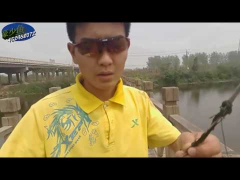 collection of slingshot fishing bow trumph from DANKUNG fishing channel