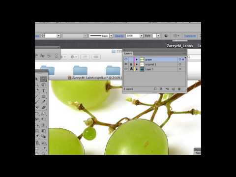 Adobe Illustrator CS6: Grapes in Gradient Mesh