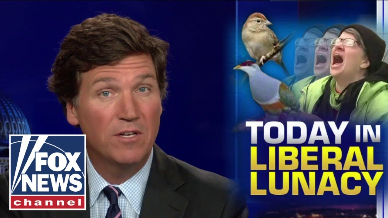Tucker: We must dismantle all systems of bird-supremacy