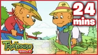 The Berenstain Bears: The Summer Job / The Big Red Kite - Ep. 21