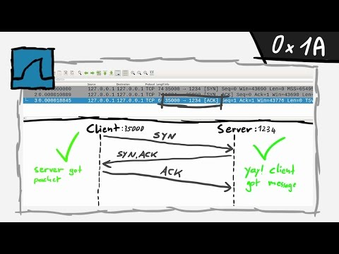 TCP Protocol introduction - bin 0x1A