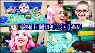 HAMSTER CAGE CLEANING & CAGE TOUR! | My Hamster is chewing h