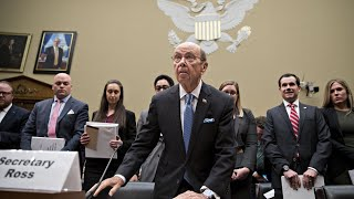Download Wilbur Ross testifies before House about census citizenship question Video