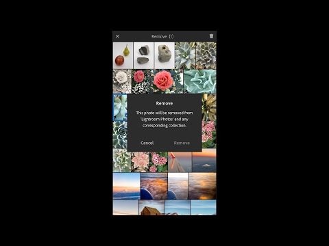 Lightroom Mobile - Five Common Questions