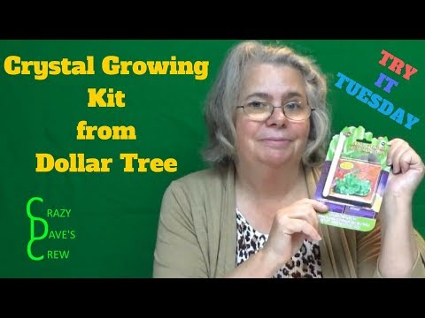 Try It Tuesday - Crystal Growing Kit From Dollar Tree