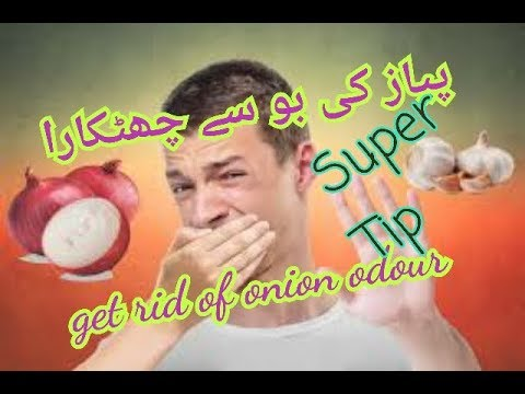 Remove onion smell from hands. پیاز کی بو دور کریں
