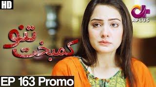 Kambakht Tanno - Episode 163 Promo | A Plus ᴴᴰ Drama | Shabbir Jaan, Tanvir Jamal, Sadaf Ashaan