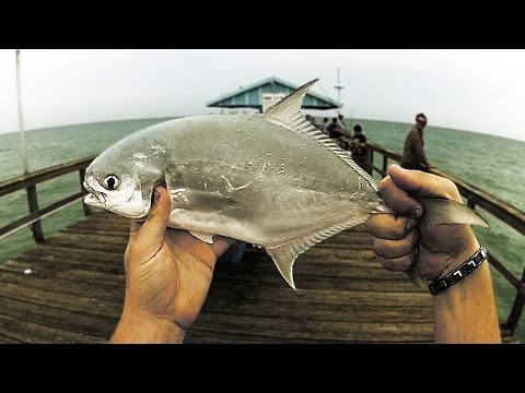 Pier Fishing For Pompano!
